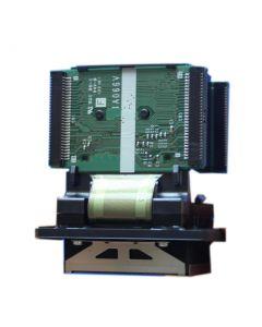 Cabezales de Epson GS-6000 - F188000